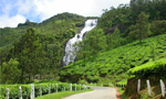 Admire the splashing water streams Munnar
