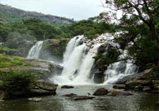 nyayamakad waterfalls in munnar