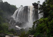 kuthumkal waterfalls in munnar