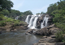thoovanam waterfalls in munnar